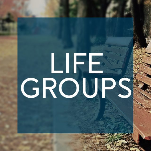 Fall-2017-Life-Groups-plain-blue