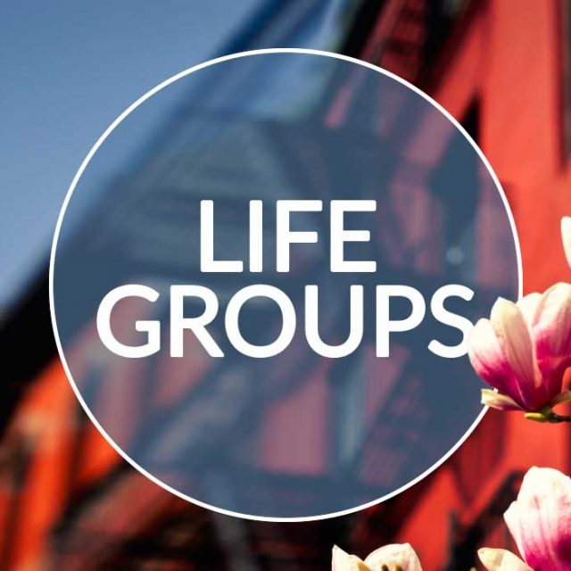 Life-Groups-Spring-Banner-With-Circle-Bold